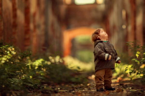 Solo con lo sguardo della fede la realtà mostra un senso oltre il visibile