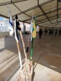 Scout BP Day 2020 Clarissa Letizia fa la sua promessa da coccinella IMG-20210228-WA0024
