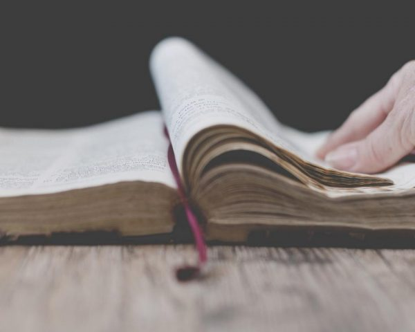 I Cattolici e la Bibbia.